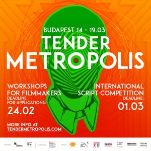 TenderMetropolis-800x800-logo